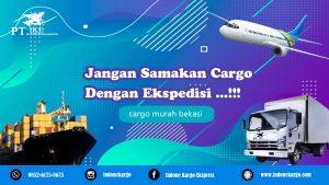Cargo Murah Bekasi: Jangan Samakan Cargo dengan Ekspedisi